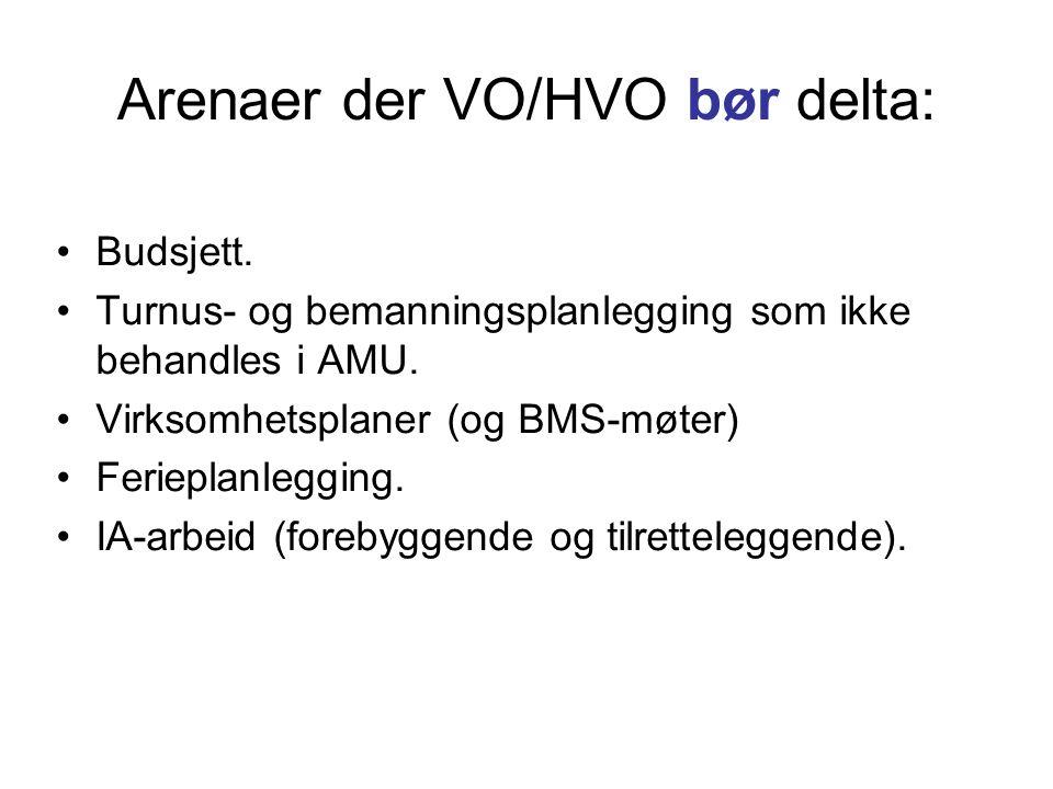 Arenaer der VO/HVO bør delta: •Budsjett. •Turnus- og bemanningsplanlegging som ikke behandles i AMU. •Virksomhetsplaner (og BMS-møter) •Ferieplanleggi