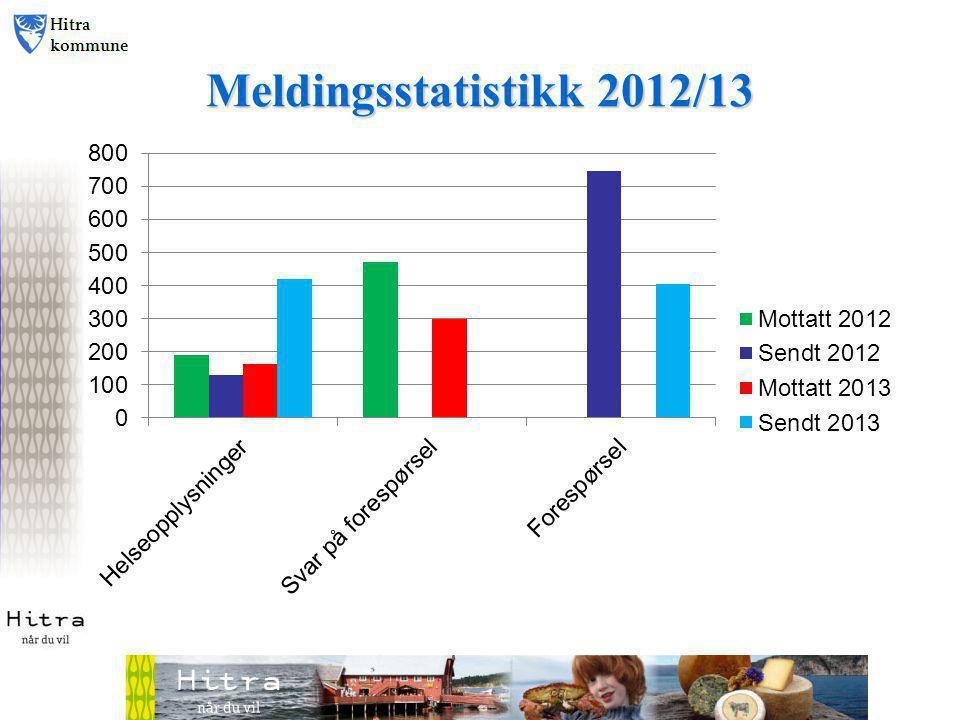 Meldingsstatistikk 2012/13