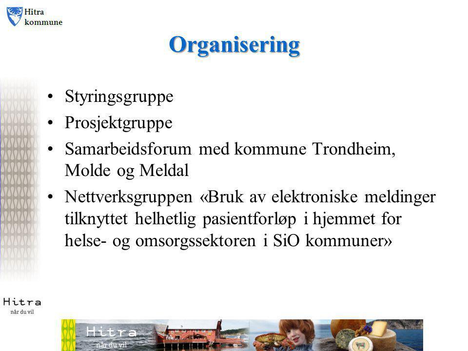 Organisering • Styringsgruppe • Prosjektgruppe • Samarbeidsforum med kommune Trondheim, Molde og Meldal • Nettverksgruppen «Bruk av elektroniske meldinger tilknyttet helhetlig pasientforløp i hjemmet for helse- og omsorgssektoren i SiO kommuner»