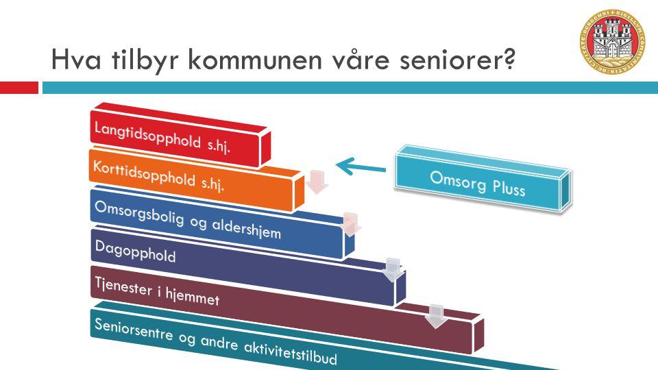 Hva tilbyr kommunen våre seniorer?