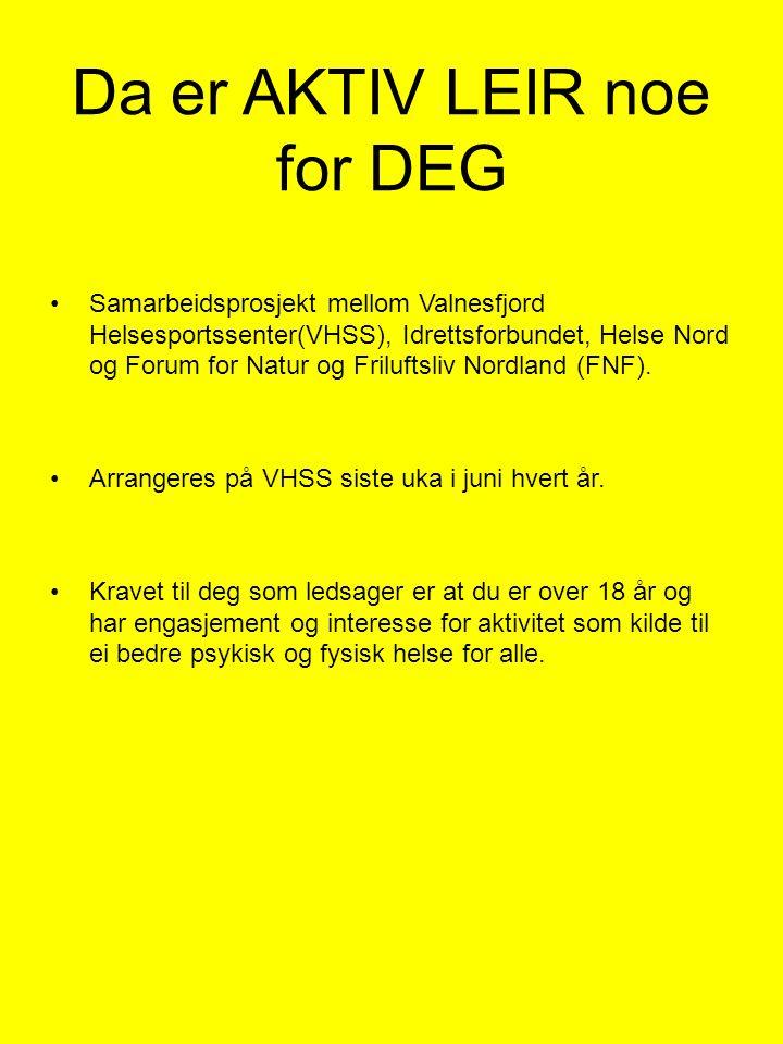 Da er AKTIV LEIR noe for DEG •Samarbeidsprosjekt mellom Valnesfjord Helsesportssenter(VHSS), Idrettsforbundet, Helse Nord og Forum for Natur og Friluf