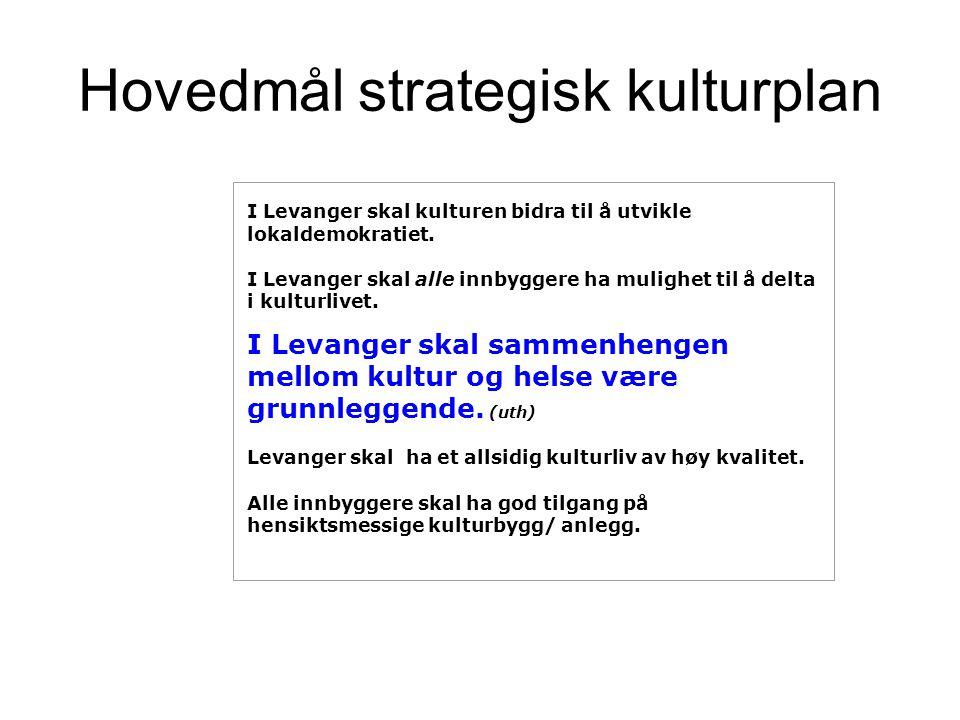 Hovedmål strategisk kulturplan I Levanger skal kulturen bidra til å utvikle lokaldemokratiet.