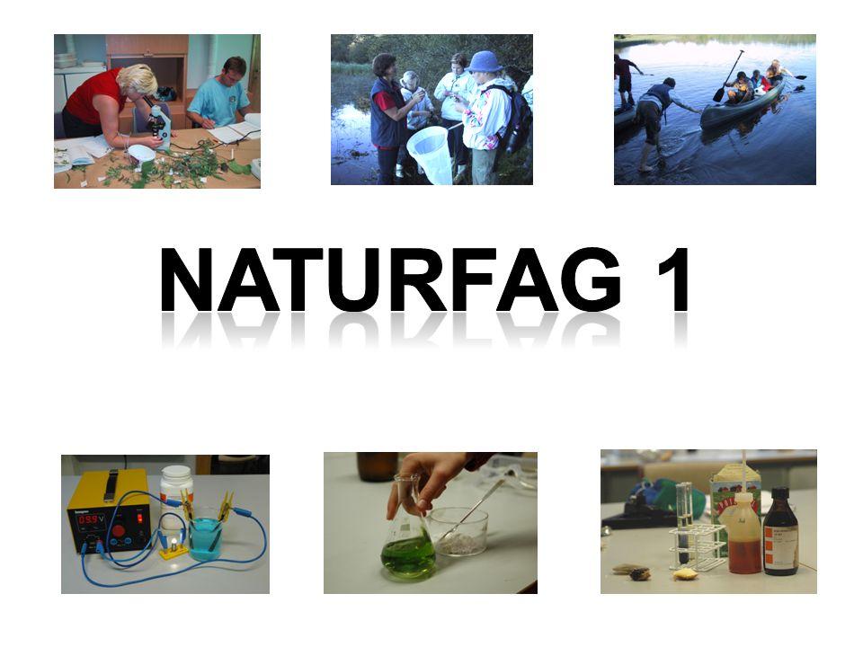 Naturfag 1