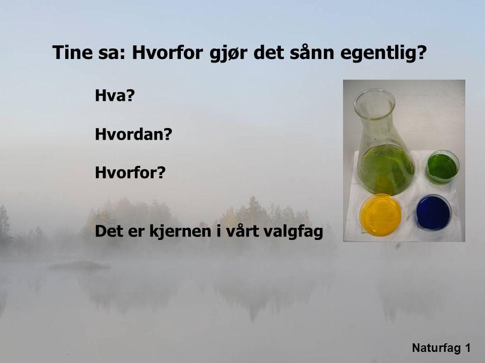 Noen av de viktigste avgjørelsene i framtida er knyttet til naturfag Utviklingen av Norge etter olja, er avhengig av naturfaglig kompetanse Norsk skole trenger naturfagkompetanse Norsk skole mangler naturfagkompetanse