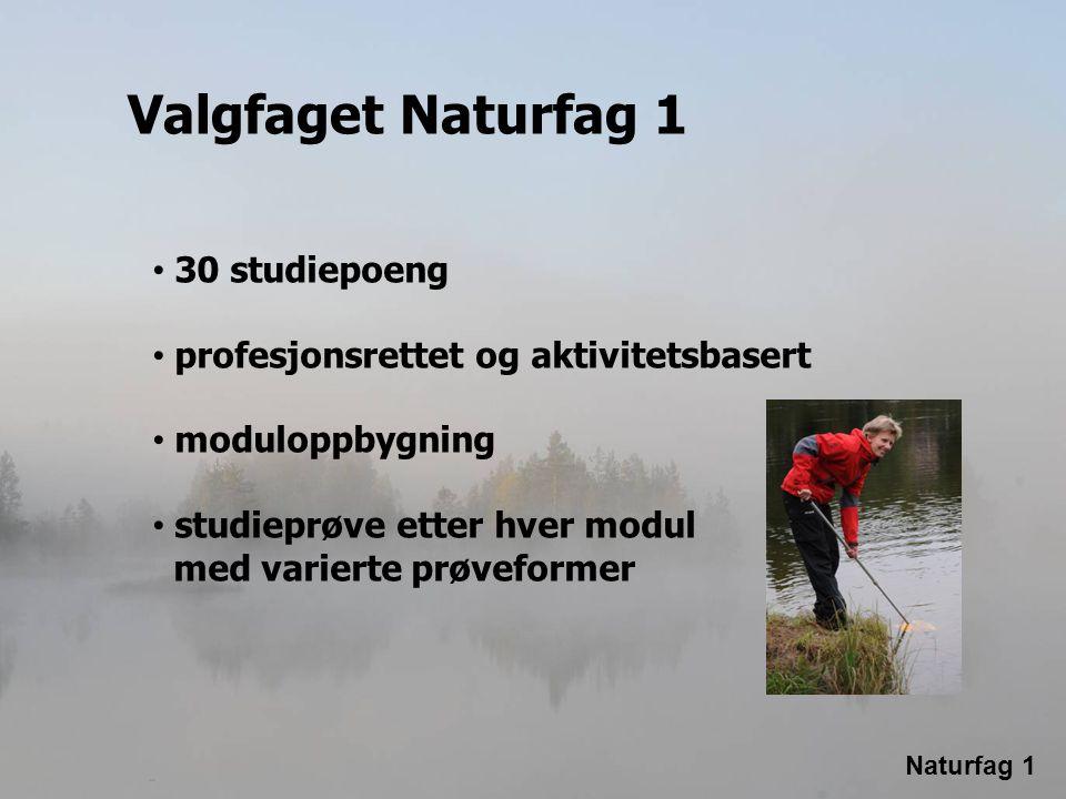 Naturfag 1 Valgfaget Naturfag 1 • 30 studiepoeng • profesjonsrettet og aktivitetsbasert • moduloppbygning • studieprøve etter hver modul med varierte