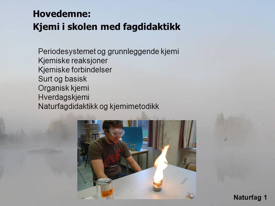 Naturfag 1 Grunnleggende fysikk med fagdidaktikk Kraft og bevegelse Energi Trykk, temperatur, volum, faser Lys og lyd Magnetisme Elektrisitet Atom- og kjernefysikk Undervisning i fysikk Hovedemne: