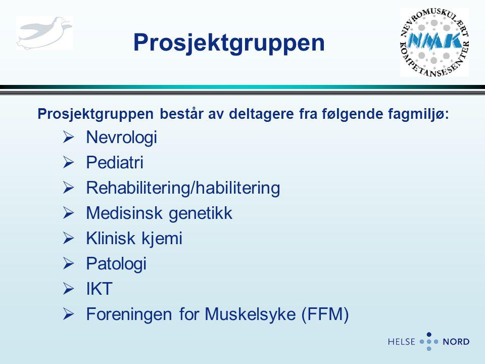 Prosjektgruppen Prosjektgruppen består av deltagere fra følgende fagmiljø:  Nevrologi  Pediatri  Rehabilitering/habilitering  Medisinsk genetikk  Klinisk kjemi  Patologi  IKT  Foreningen for Muskelsyke (FFM)