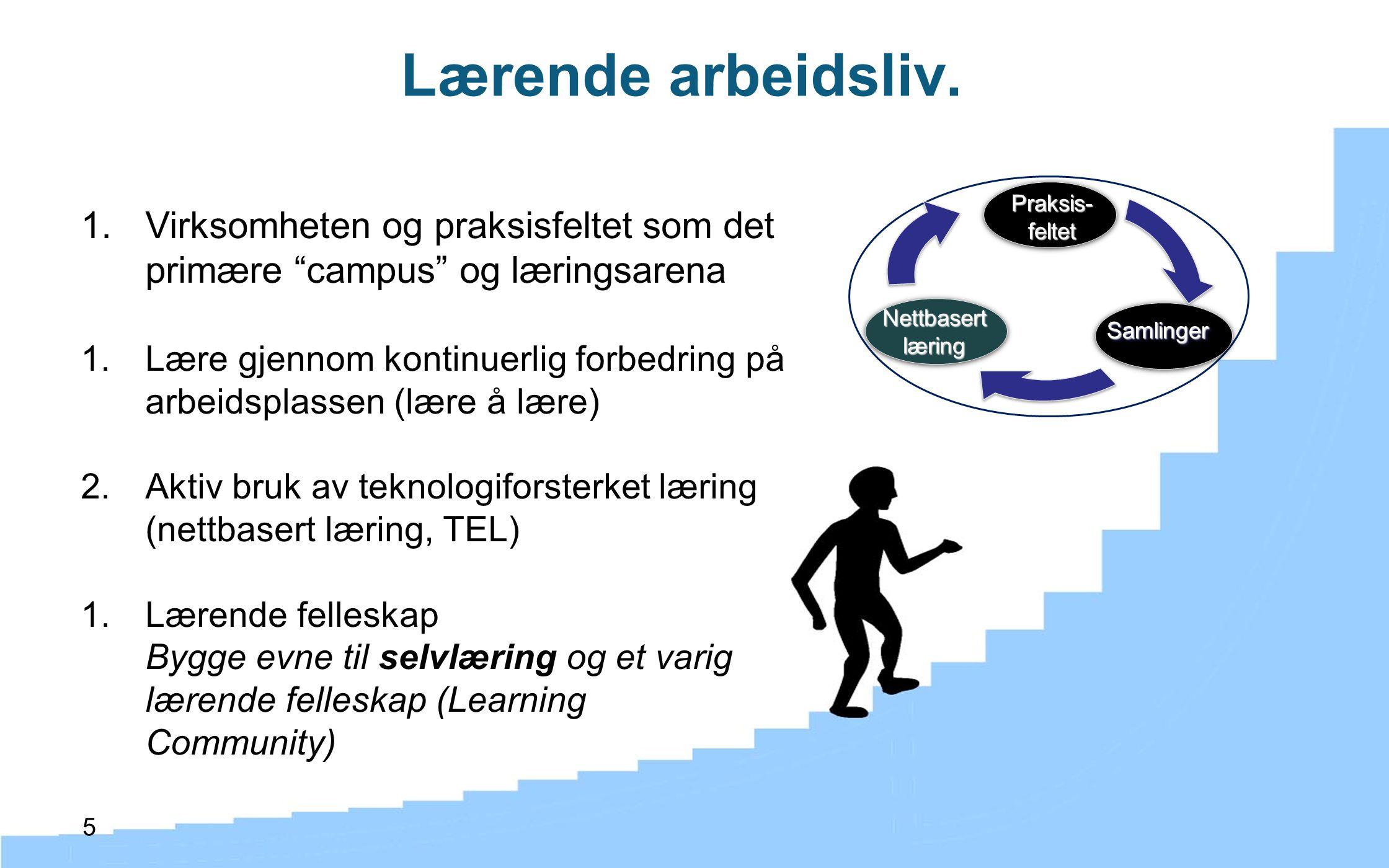 """5 1.Virksomheten og praksisfeltet som det primære """"campus"""" og læringsarena 1.Lære gjennom kontinuerlig forbedring på arbeidsplassen (lære å lære) 2.Ak"""