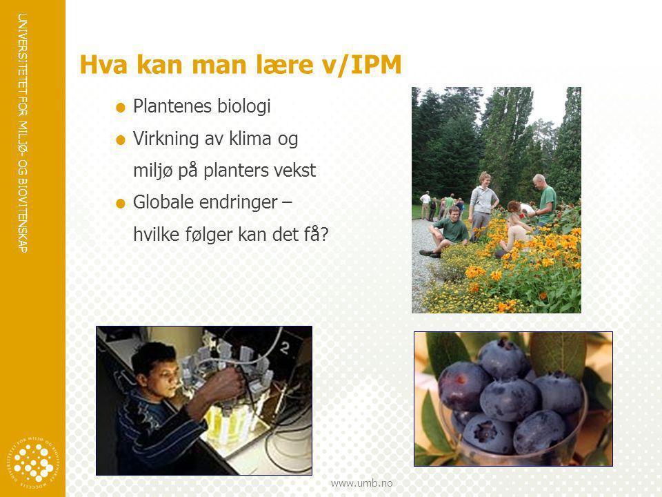 UNIVERSITETET FOR MILJØ- OG BIOVITENSKAP www.umb.no Hva kan man lære v/IPM  Plantenes biologi  Virkning av klima og miljø på planters vekst  Global