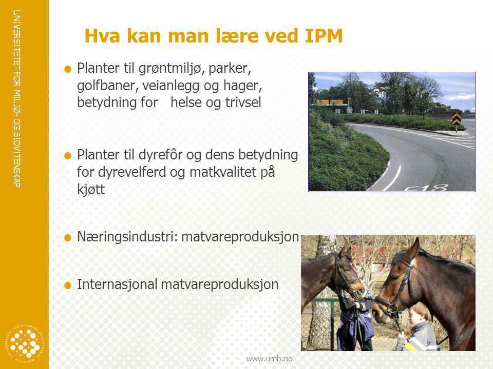 UNIVERSITETET FOR MILJØ- OG BIOVITENSKAP www.umb.no Hva kan man lære ved IPM  Planter til grøntmiljø, parker, golfbaner, veianlegg og hager, betydnin
