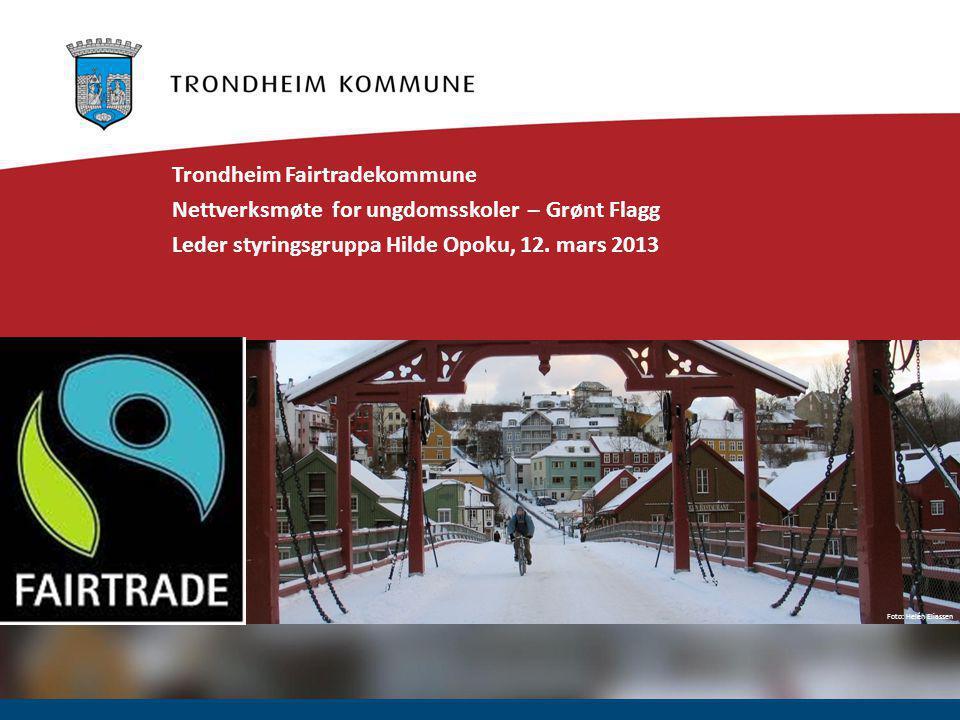 Foto: Helén Eliassen Trondheim Fairtradekommune Nettverksmøte for ungdomsskoler – Grønt Flagg Leder styringsgruppa Hilde Opoku, 12.
