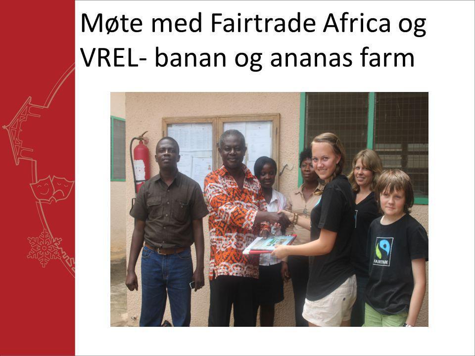 Møte med Fairtrade Africa og VREL- banan og ananas farm