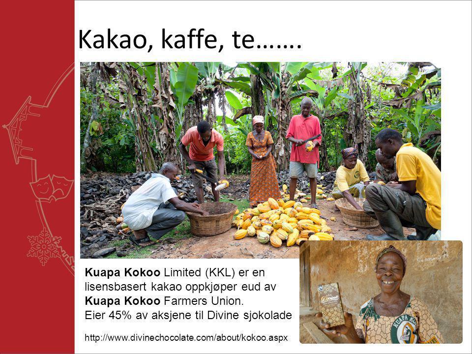 Kakao, kaffe, te……. Kuapa Kokoo Limited (KKL) er en lisensbasert kakao oppkjøper eud av Kuapa Kokoo Farmers Union. Eier 45% av aksjene til Divine sjok