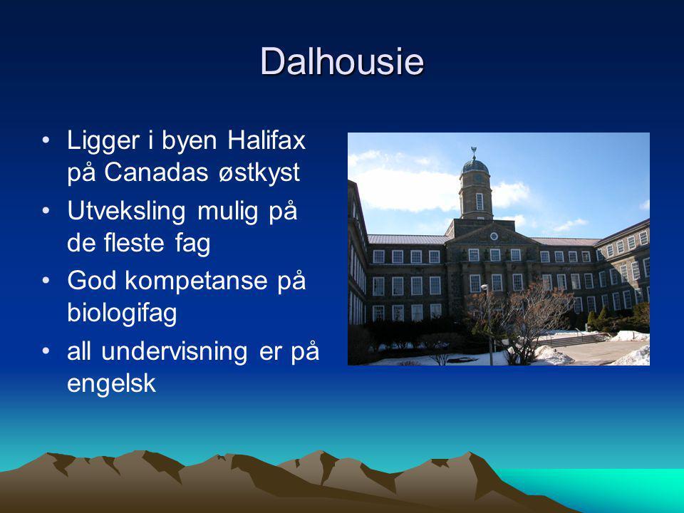 Dalhousie •Ligger i byen Halifax på Canadas østkyst •Utveksling mulig på de fleste fag •God kompetanse på biologifag •all undervisning er på engelsk