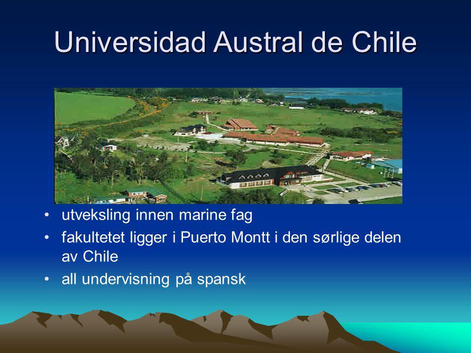 Universidad Austral de Chile • •utveksling innen marine fag • •fakultetet ligger i Puerto Montt i den sørlige delen av Chile • •all undervisning på sp