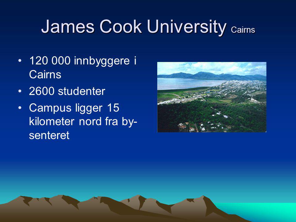 James Cook University Cairns •120 000 innbyggere i Cairns •2600 studenter •Campus ligger 15 kilometer nord fra by- senteret