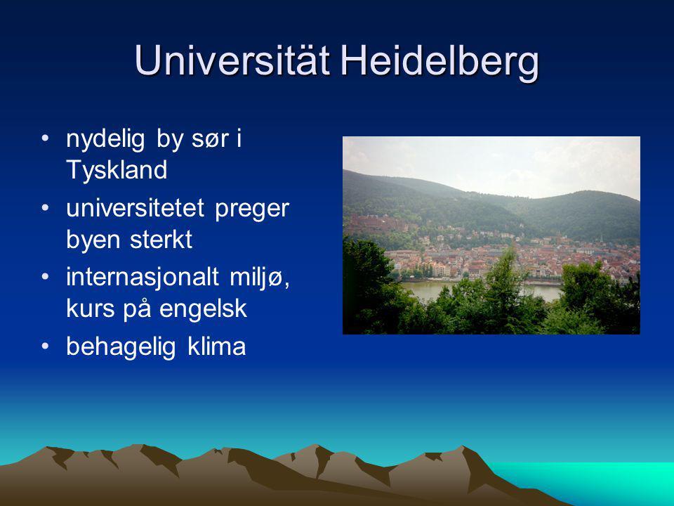Universität Heidelberg •nydelig by sør i Tyskland •universitetet preger byen sterkt •internasjonalt miljø, kurs på engelsk •behagelig klima