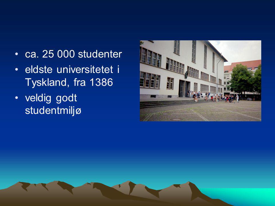 •ca. 25 000 studenter •eldste universitetet i Tyskland, fra 1386 •veldig godt studentmiljø