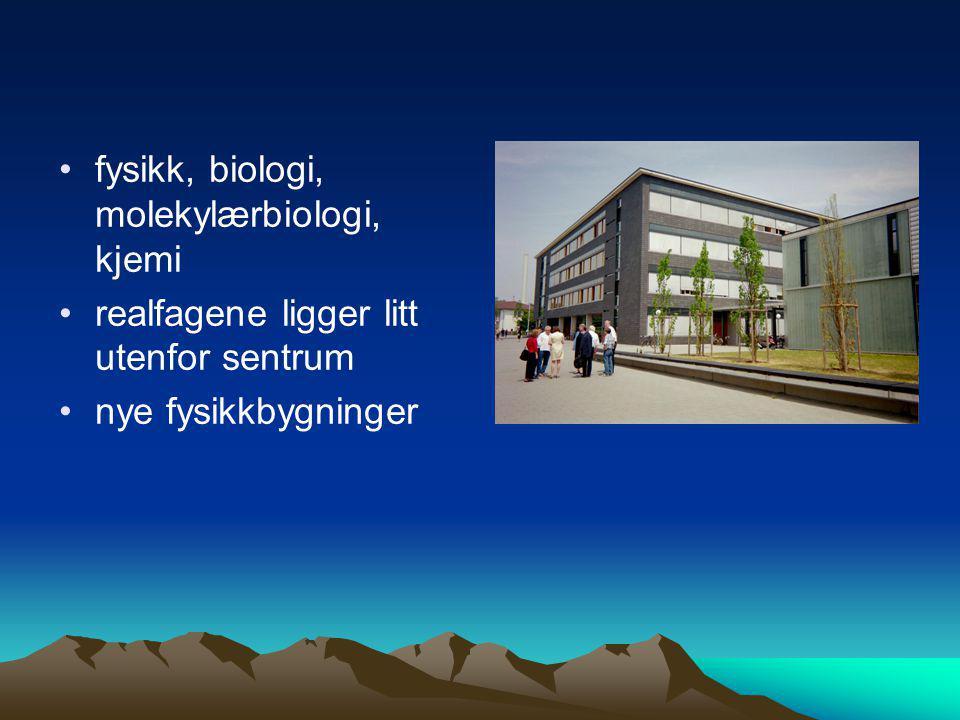 •fysikk, biologi, molekylærbiologi, kjemi •realfagene ligger litt utenfor sentrum •nye fysikkbygninger