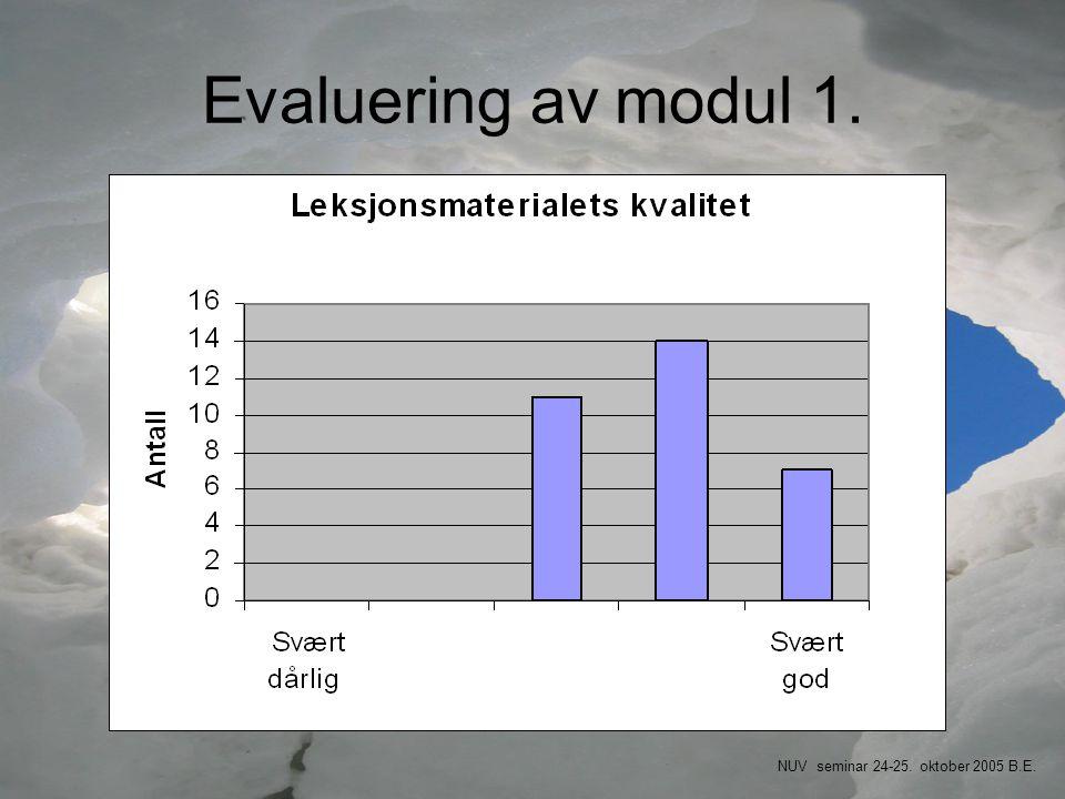Evaluering av modul 1. NUV seminar 24-25. oktober 2005 B.E.