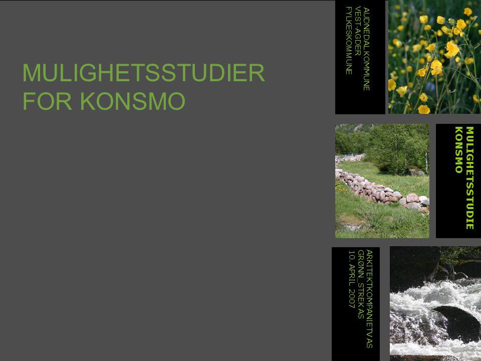 MULIGHETSSTUDIER FOR KONSMO MULIGHETSSTUDIEKONSMO ARKITEKTKOMPANIETV ASGRØNN_STREK AS10.