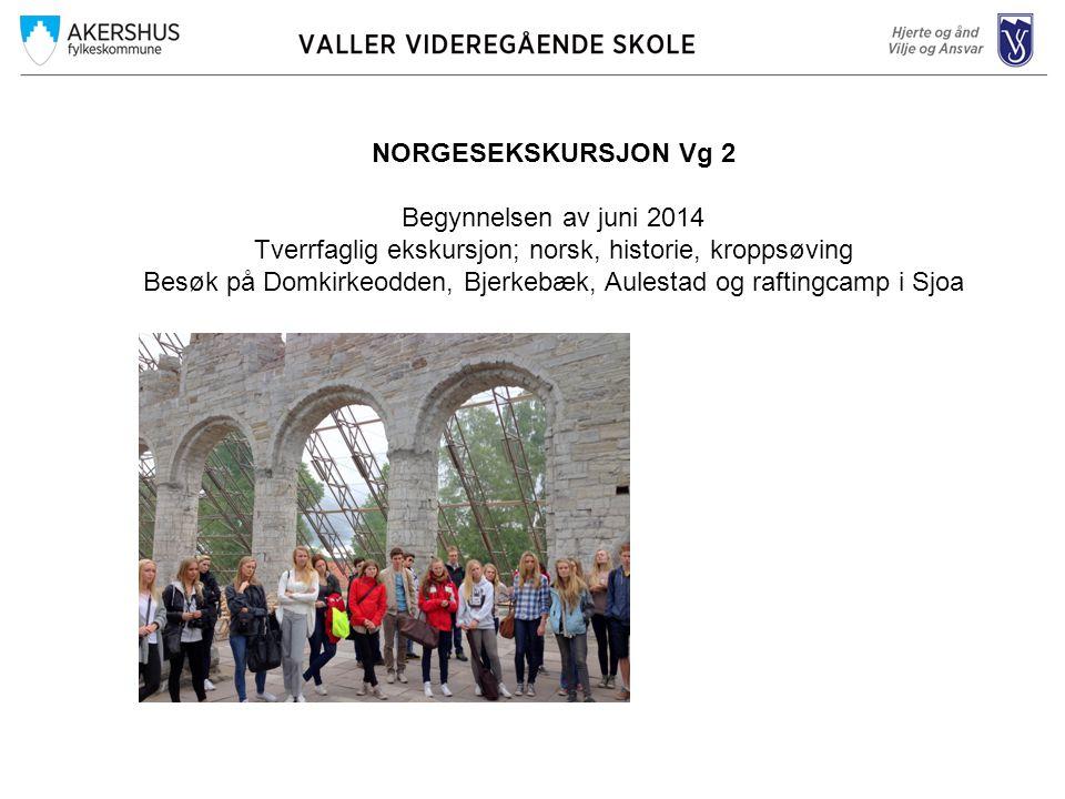 NORGESEKSKURSJON Vg 2 Begynnelsen av juni 2014 Tverrfaglig ekskursjon; norsk, historie, kroppsøving Besøk på Domkirkeodden, Bjerkebæk, Aulestad og raftingcamp i Sjoa