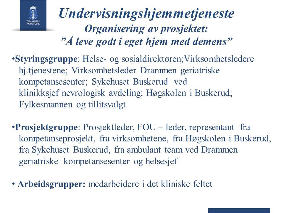 """Undervisningshjemmetjeneste Organisering av prosjektet: """"Å leve godt i eget hjem med demens"""" • Styringsgruppe: Helse- og sosialdirektøren;Virksomhetsl"""