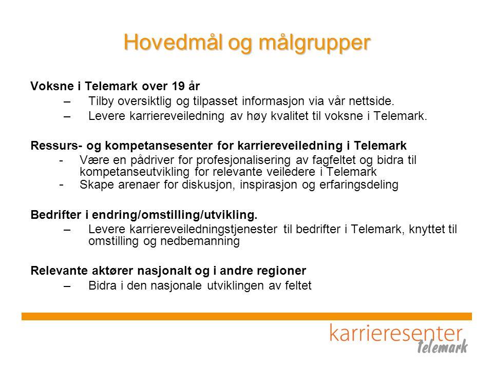 Hovedmål og målgrupper Voksne i Telemark over 19 år –Tilby oversiktlig og tilpasset informasjon via vår nettside.