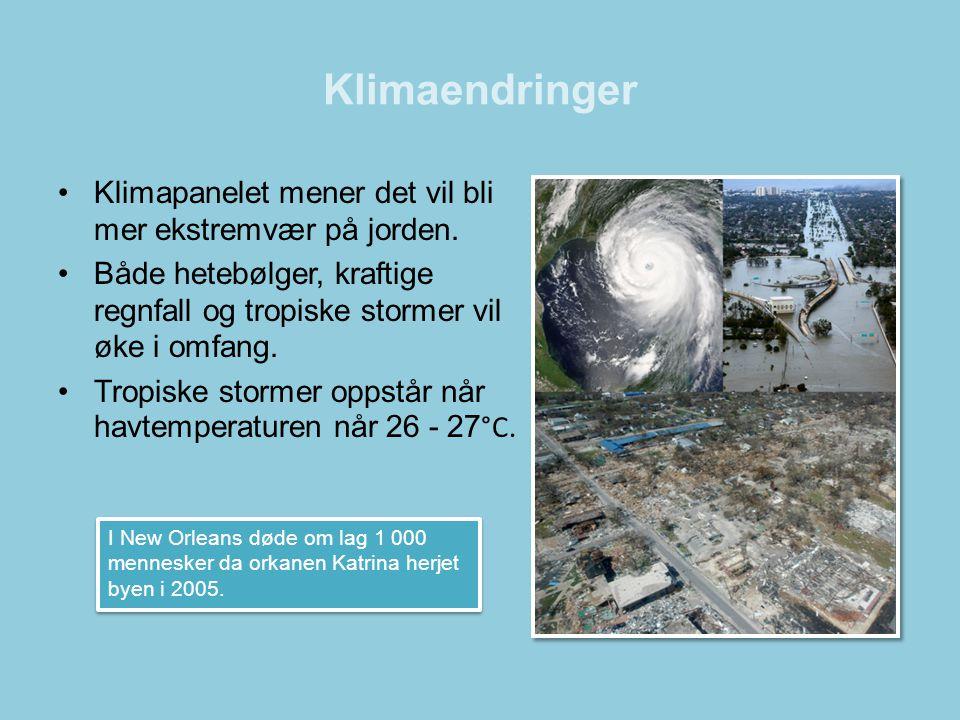 Klimaendringer •Klimapanelet mener det vil bli mer ekstremvær på jorden. •Både hetebølger, kraftige regnfall og tropiske stormer vil øke i omfang. •Tr