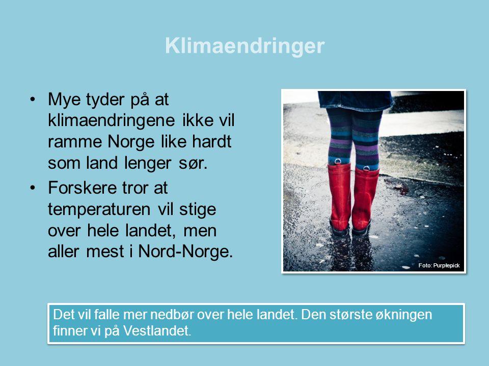 Klimaendringer •Mye tyder på at klimaendringene ikke vil ramme Norge like hardt som land lenger sør. •Forskere tror at temperaturen vil stige over hel