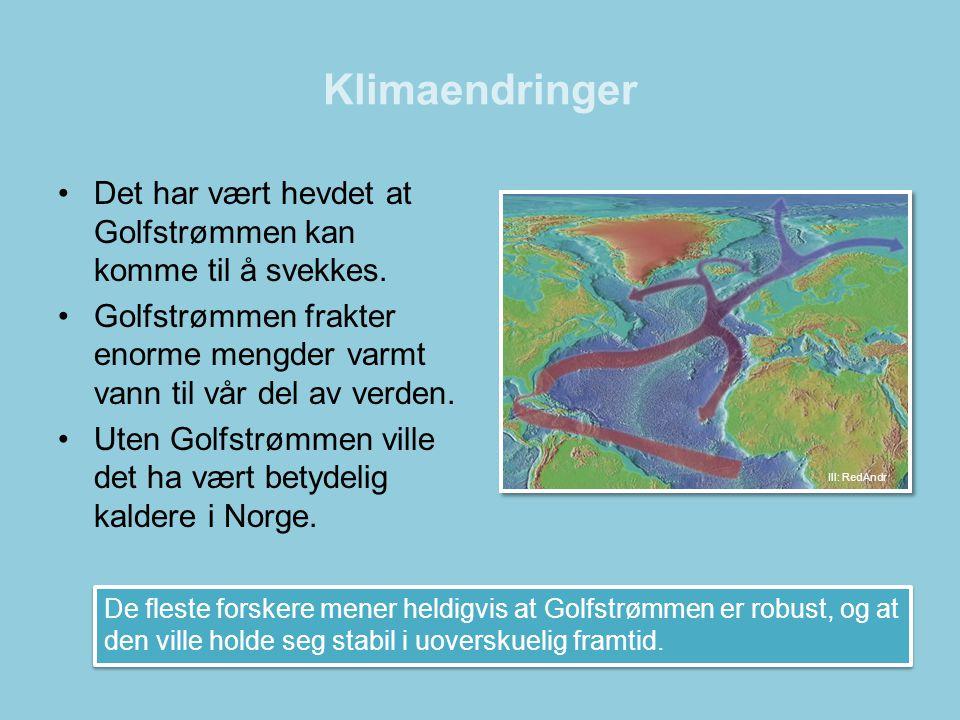 Klimaendringer •Det har vært hevdet at Golfstrømmen kan komme til å svekkes. •Golfstrømmen frakter enorme mengder varmt vann til vår del av verden. •U