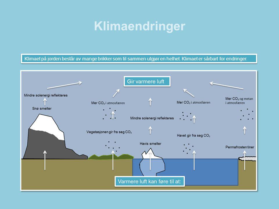 Klimaendringer •I løpet av de siste hundre år har temperaturen på jorden steget med 0,8 °C.