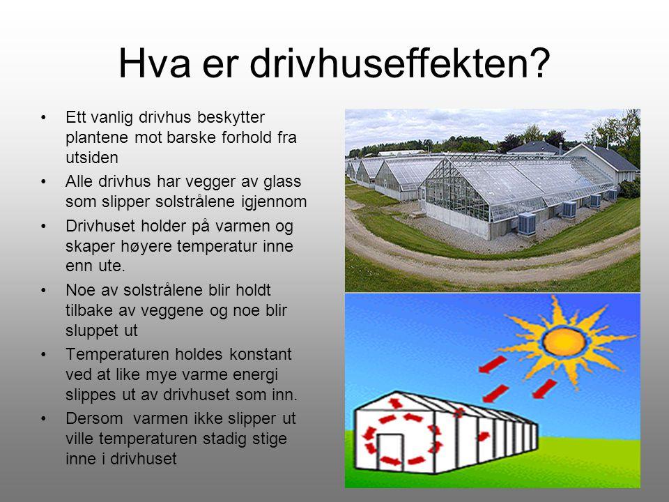 Hva er drivhuseffekten? •Ett vanlig drivhus beskytter plantene mot barske forhold fra utsiden •Alle drivhus har vegger av glass som slipper solstrålen