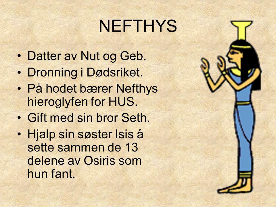 NEFTHYS •Datter av Nut og Geb. •Dronning i Dødsriket. •På hodet bærer Nefthys hieroglyfen for HUS. •Gift med sin bror Seth. •Hjalp sin søster Isis å s