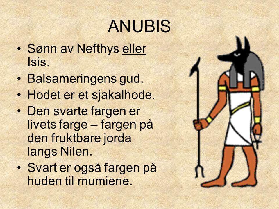 ANUBIS •Sønn av Nefthys eller Isis. •Balsameringens gud. •Hodet er et sjakalhode. •Den svarte fargen er livets farge – fargen på den fruktbare jorda l