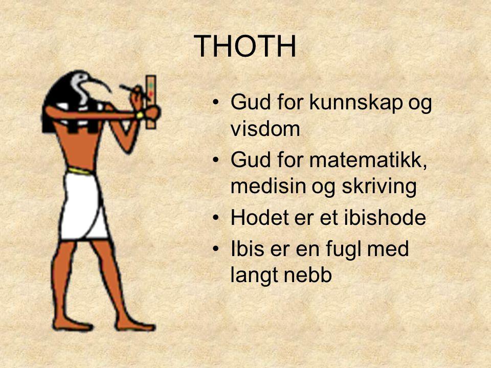 THOTH •Gud for kunnskap og visdom •Gud for matematikk, medisin og skriving •Hodet er et ibishode •Ibis er en fugl med langt nebb
