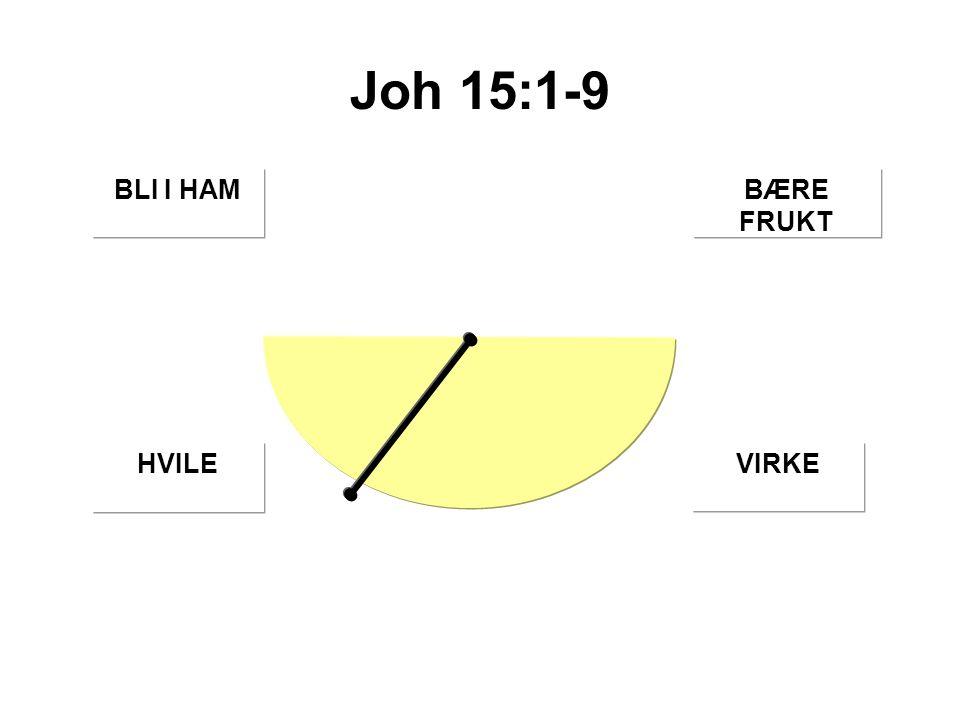 Joh 15:1-9 BÆRE FRUKT BLI I HAM HVILEVIRKE