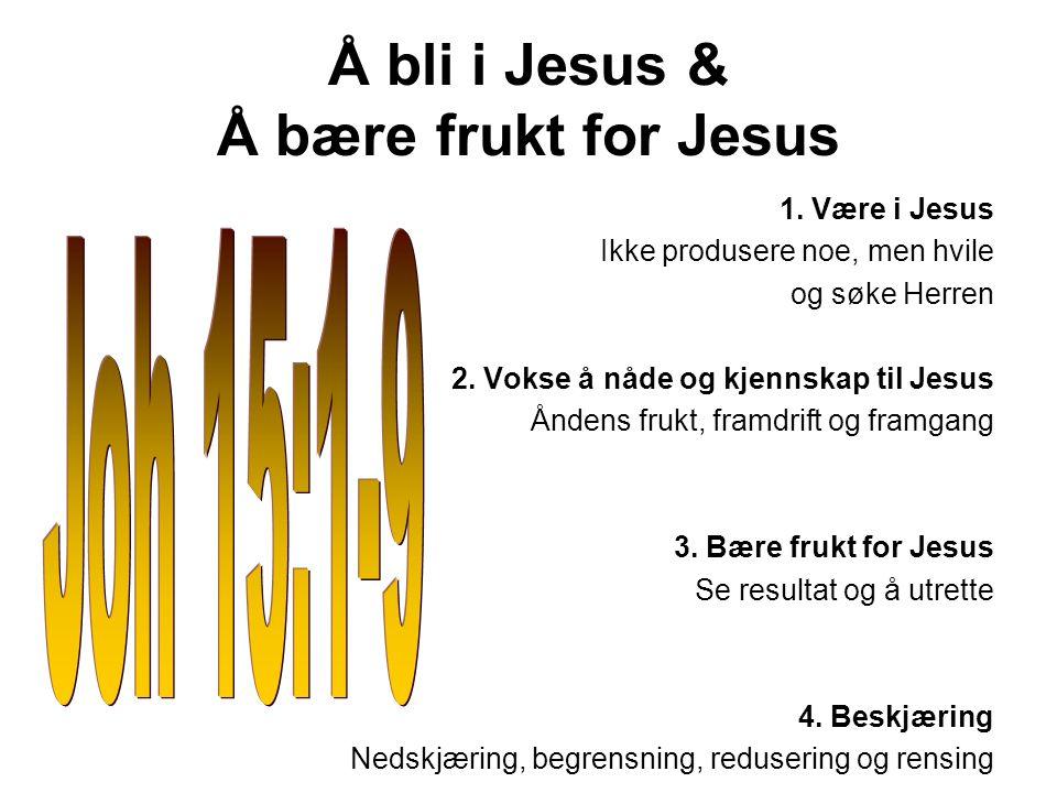 Å bli i Jesus & Å bære frukt for Jesus 1. Være i Jesus Ikke produsere noe, men hvile og søke Herren 2. Vokse å nåde og kjennskap til Jesus Åndens fruk