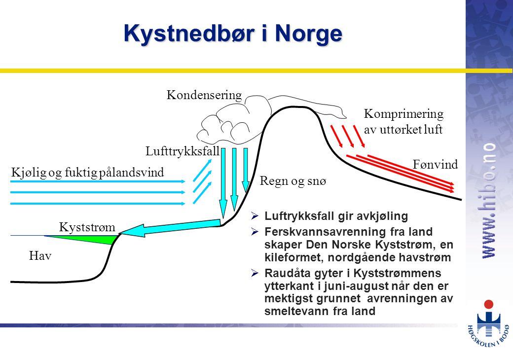 OMJ-98 Kjølig og fuktig pålandsvind Kondensering Komprimering av uttørket luft Fønvind Lufttrykksfall Regn og snø Kyststrøm Hav Kystnedbør i Norge  Luftrykksfall gir avkjøling  Ferskvannsavrenning fra land skaper Den Norske Kyststrøm, en kileformet, nordgående havstrøm  Raudåta gyter i Kyststrømmens ytterkant i juni-august når den er mektigst grunnet avrenningen av smeltevann fra land