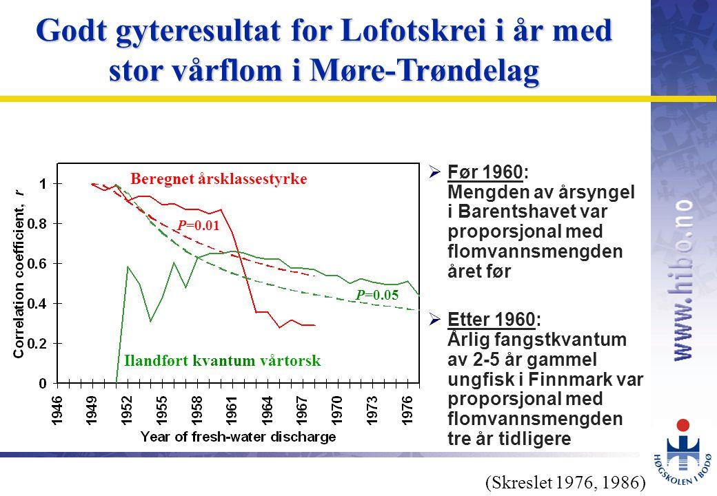 OMJ-98 Godt gyteresultat for Lofotskrei i år med stor vårflom i Møre-Trøndelag Beregnet årsklassestyrke Ilandført kvantum vårtorsk P=0.05 P=0.01 (Skreslet 1976, 1986)  Før 1960: Mengden av årsyngel i Barentshavet var proporsjonal med flomvannsmengden året før  Etter 1960: Årlig fangstkvantum av 2-5 år gammel ungfisk i Finnmark var proporsjonal med flomvannsmengden tre år tidligere