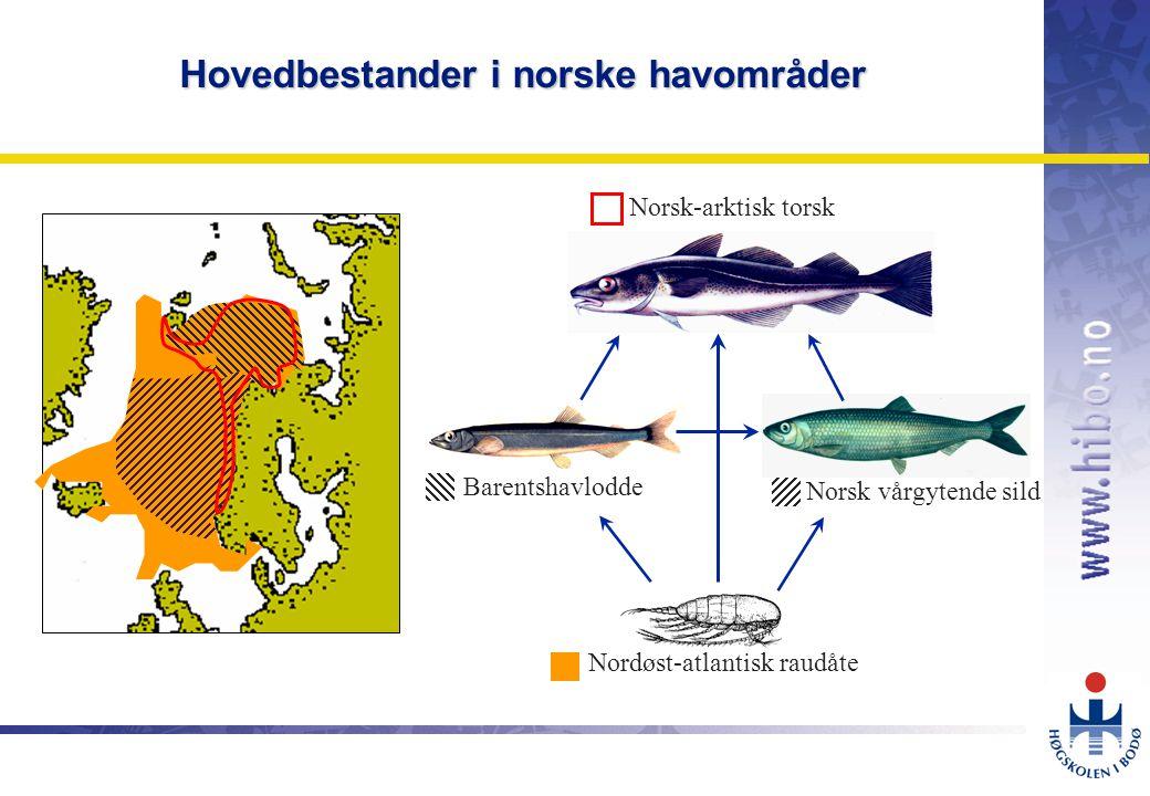 OMJ-98 Hovedbestander i norske havområder Nordøst-atlantisk raudåte Norsk vårgytende sild Barentshavlodde Norsk-arktisk torsk