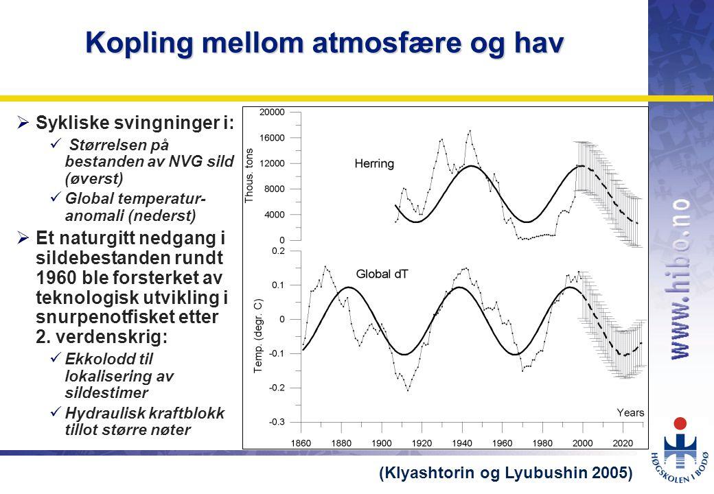 OMJ-98 Kopling mellom atmosfære og hav  Sykliske svingninger i:  Størrelsen på bestanden av NVG sild (øverst)  Global temperatur- anomali (nederst)  Et naturgitt nedgang i sildebestanden rundt 1960 ble forsterket av teknologisk utvikling i snurpenotfisket etter 2.