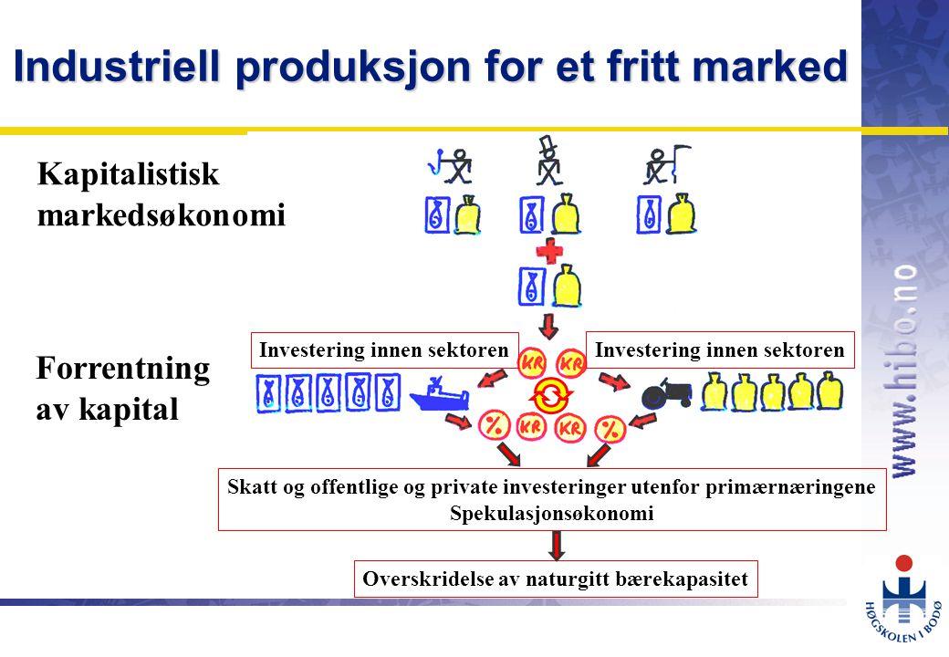 OMJ-98 Industriell produksjon for et fritt marked Skatt og offentlige og private investeringer utenfor primærnæringene Spekulasjonsøkonomi Overskridelse av naturgitt bærekapasitet Forrentning av kapital Investering innen sektoren Kapitalistisk markedsøkonomi