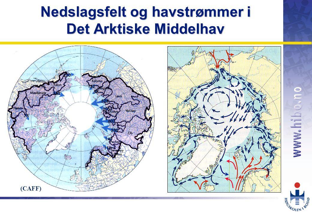 OMJ-98 Nedslagsfelt og havstrømmer i Det Arktiske Middelhav (CAFF)