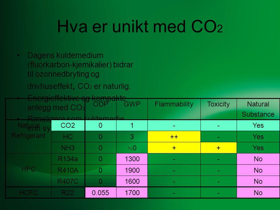 •Hus - areal/isolering/vinduer/tak.•Radiatorer - alder/størrelse/antall.