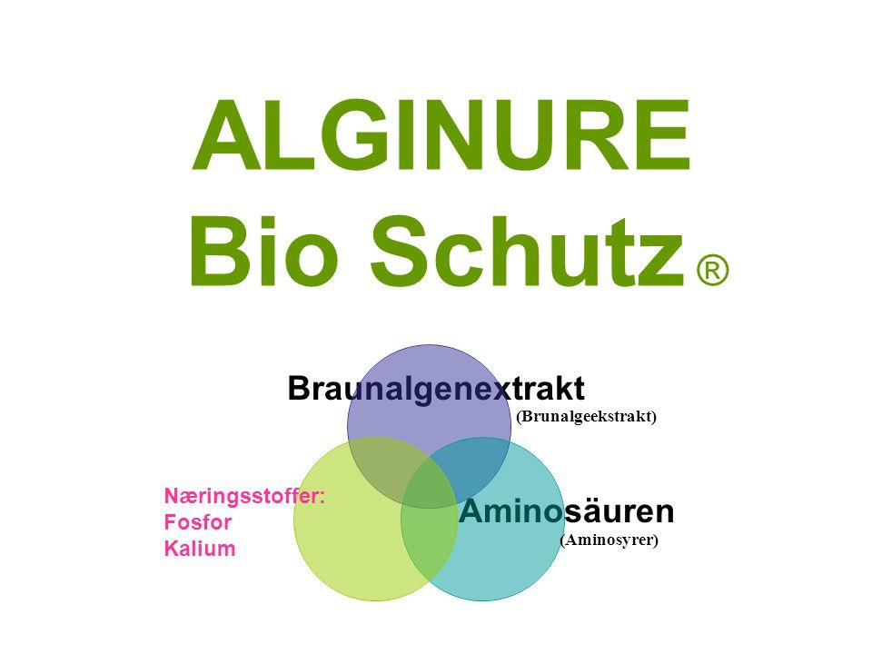 ALGINURE Bio Schutz ® Braunalgenextrakt Aminosäuren Næringsstoffer: Fosfor Kalium (Brunalgeekstrakt) (Aminosyrer)