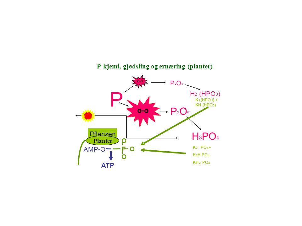 P P 2 O 3 o-o o-o P 2 O 5 H 2 (HPO 3 ) H 3 PO 4 K 2 (HPO 3 ) + KH (HPO 3 ) K 3 PO 4 + K 2 H PO 4 KH 2 PO 4 Pflanzen AMP-O O P O O P-Chemie, Düngung u.