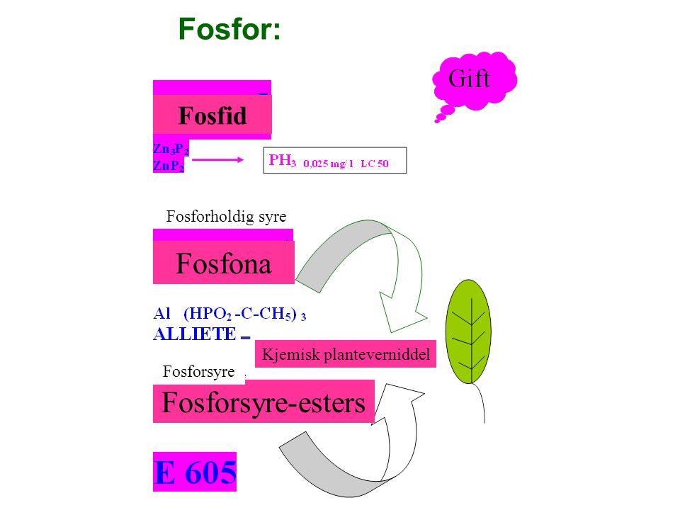 Fosfid Fosforholdig syre Fosfona Fosforsyre-esters Fosforsyre Kjemisk planteverniddel - Fosfor: