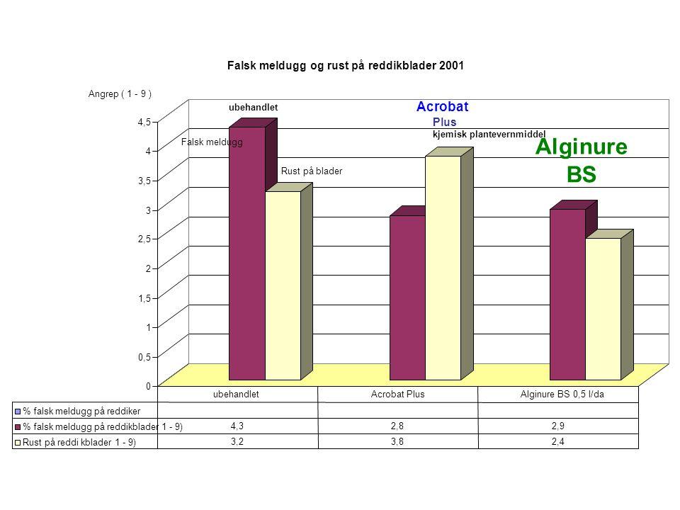 0 0,5 1 1,5 2 2,5 3 3,5 4 4,5 Falsk meldugg og rust på reddikblader 2001 % falsk meldugg på reddiker % falsk meldugg på reddikblader 1 - 9) 4,32,82,9 Rust på reddi kblader 1 - 9) 3,23,82,4 ubehandletAcrobat PlusAlginure BS 0,5 l/da Angrep ( 1 - 9 ) Falsk meldugg Rust på blader ubehandlet Acrobat Plus kjemisk plantevernmiddel Alginure BS