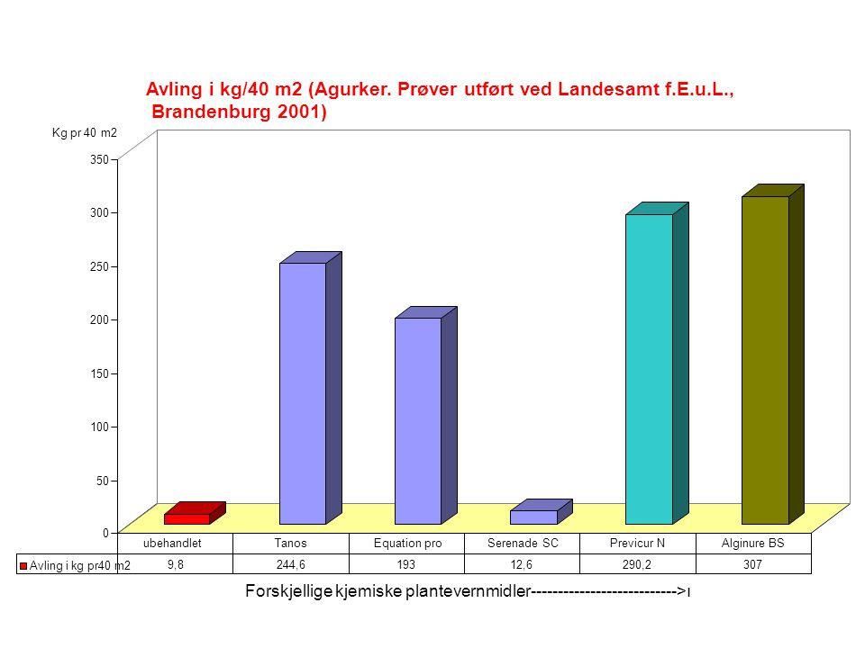 0 50 100 150 200 250 300 350 Avling i kg/40 m2 (Agurker.